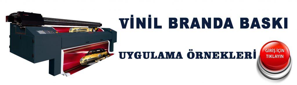 vinil-baski